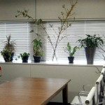 clinic office013
